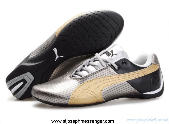 Pleasantly Rapture Surprised Puma Shoes 205 Racing Gold Silver BDGHJPTY39